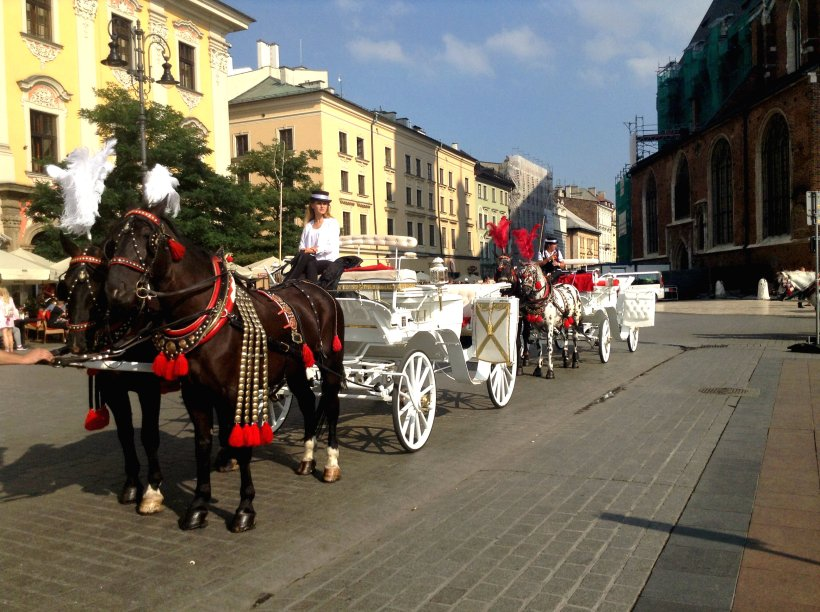 Horse and buggy Stare Miasto Krakow