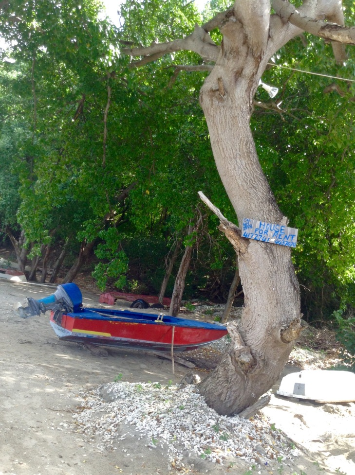 Fishing boat under tree, on the sand, Tyrrel Carricou