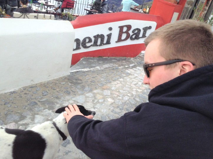 Santorini, Greece, dog, friendly