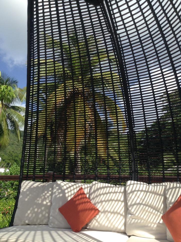 Gazebo, pillow chair, sun over, Palm tree, rattan, tropical